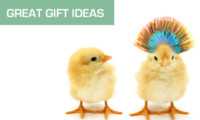 Great Gift Ideas Review